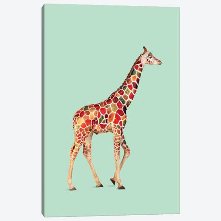 Colored Giraffe Canvas Print #LOO9} by Jonas Loose Canvas Print