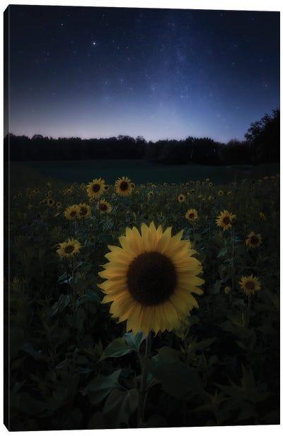 Sun Under Stars Canvas Art Print