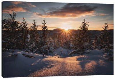 A Nordic Winter Tale Canvas Art Print