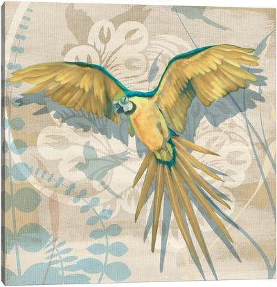 Parrot Society II Canvas Art Print