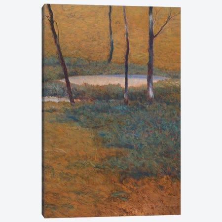 Island Pond Canvas Print #LOV3} by Kent Lovelace Canvas Print