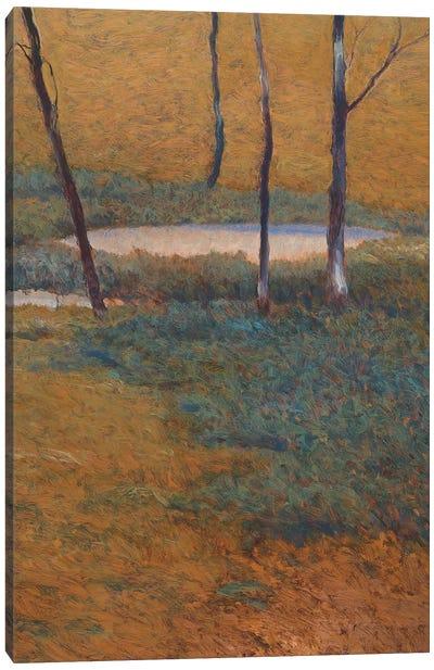 Island Pond Canvas Art Print