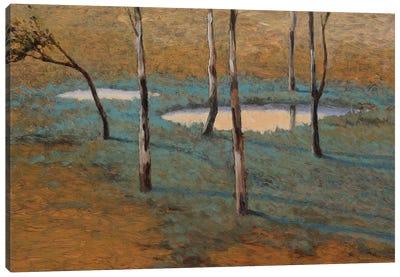Marais Canvas Art Print