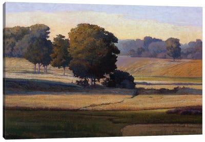 Pezier Canvas Art Print