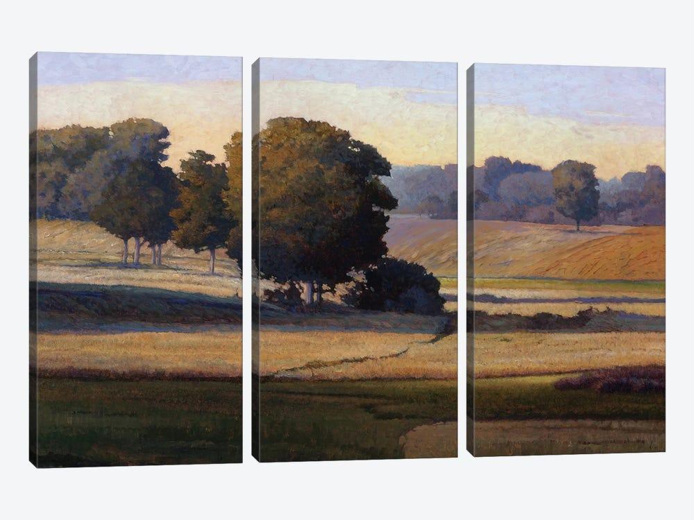 Pezier by Kent Lovelace 3-piece Canvas Print