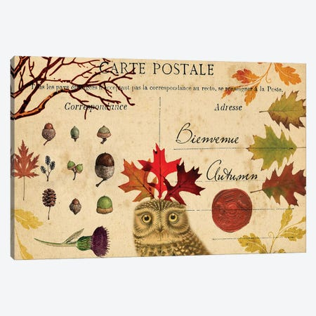 Collected Autumn V Canvas Print #LOY32} by Sandy Lloyd Canvas Art