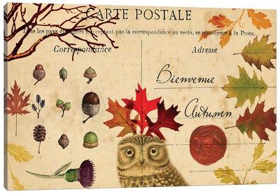 Collected Autumn V Canvas Art Print