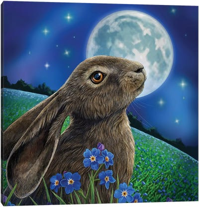 Moon Gazer Canvas Art Print
