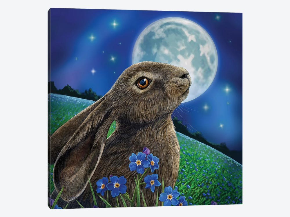 Moon Gazer by Lisa Parker 1-piece Canvas Print