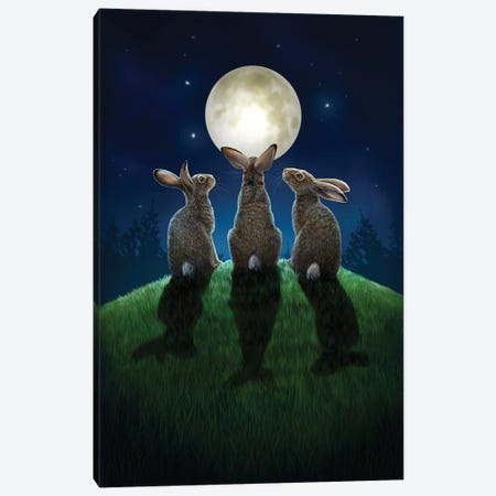 Moon Shadows Canvas Print #LPA14} by Lisa Parker Canvas Artwork