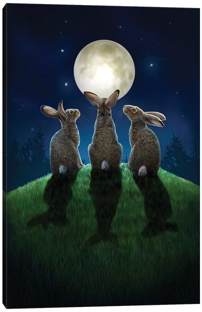 Moon Shadows Canvas Art Print