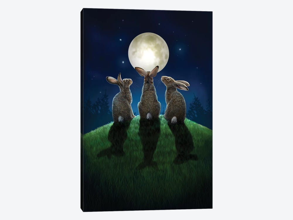Moon Shadows by Lisa Parker 1-piece Canvas Art
