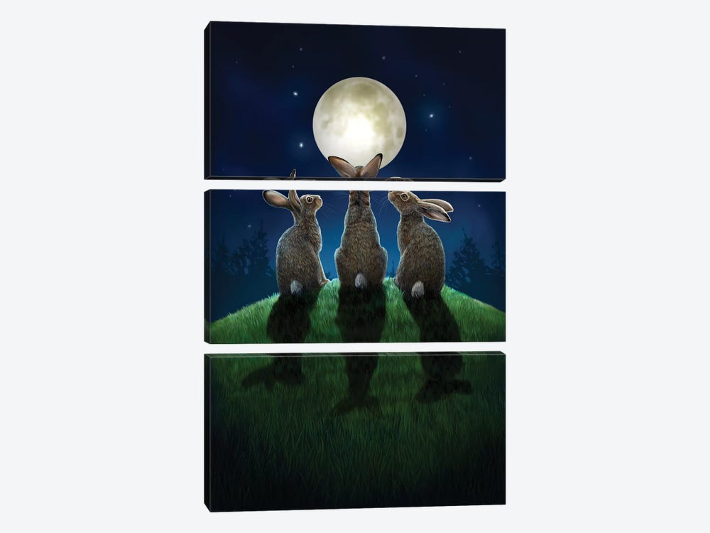 Moon Shadows by Lisa Parker 3-piece Canvas Art