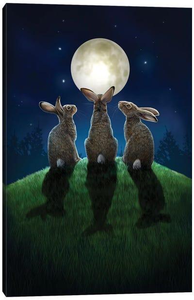 Moon Shadows Canvas Art Print