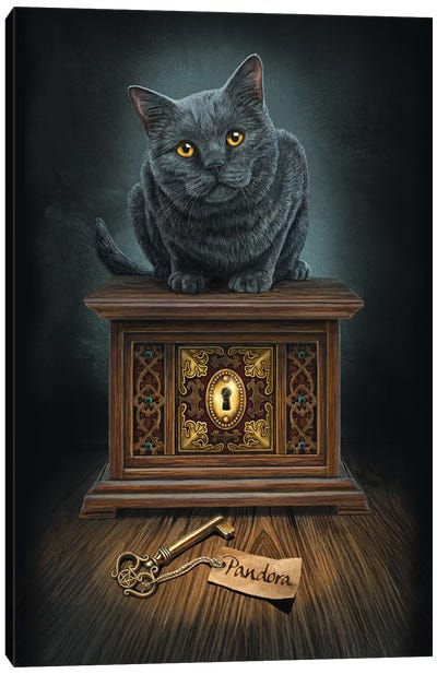 Pandora's Box Canvas Art Print
