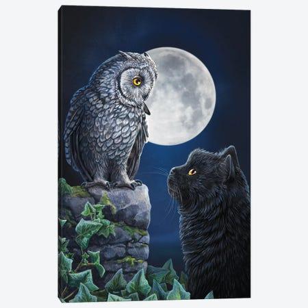 Purrfect Wisdom Canvas Print #LPA18} by Lisa Parker Canvas Print