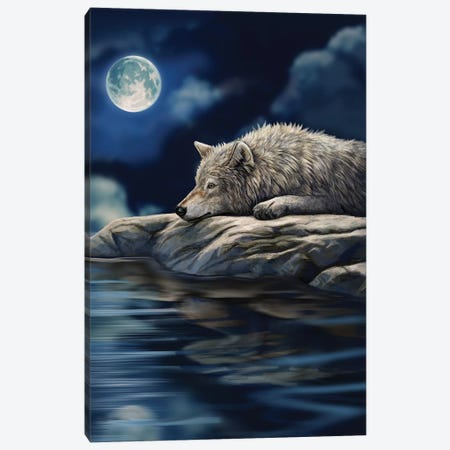 Quiet Reflection Canvas Print #LPA19} by Lisa Parker Canvas Print