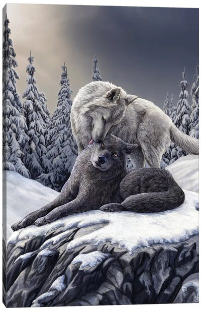 Snow Kisses Canvas Art Print