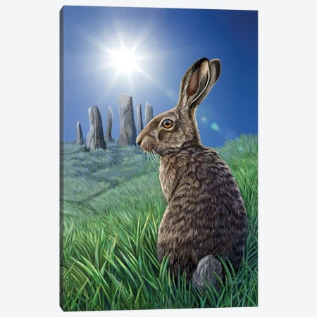 Solstice Canvas Print #LPA26} by Lisa Parker Art Print