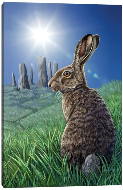 Solstice Canvas Art Print