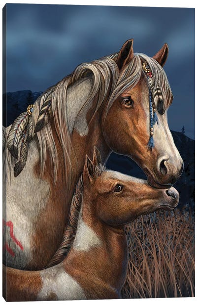 Apache Canvas Art Print