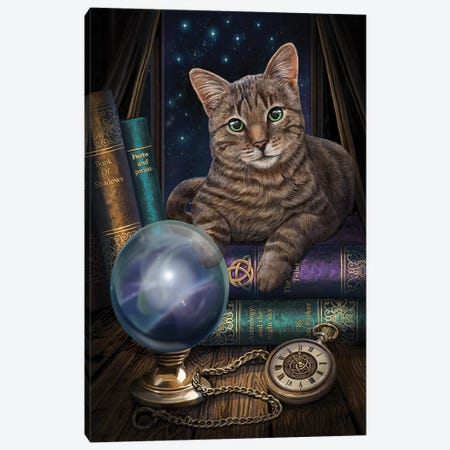 The Fortune Teller Canvas Print #LPA31} by Lisa Parker Art Print