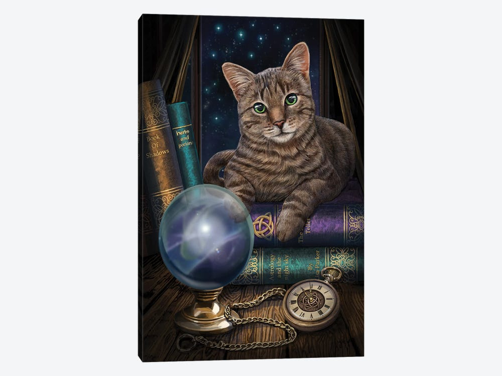 The Fortune Teller by Lisa Parker 1-piece Canvas Print