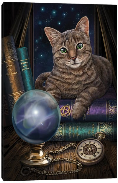 The Fortune Teller Canvas Art Print
