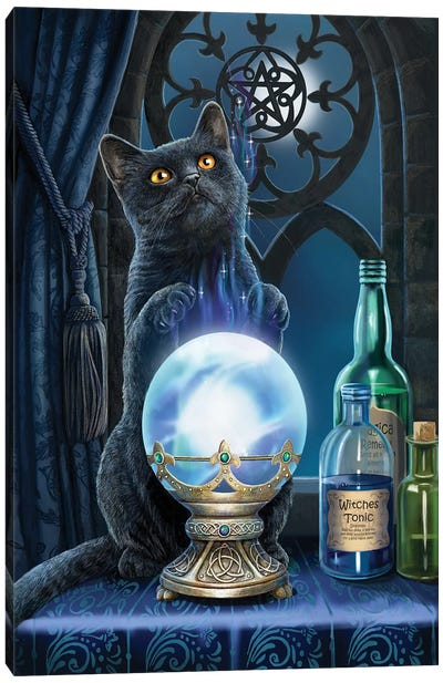 The Witches Apprentice Canvas Art Print