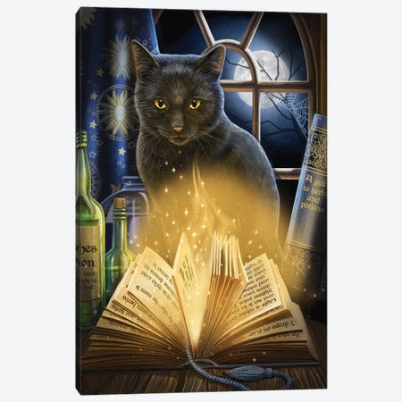 Bewitched Canvas Print #LPA3} by Lisa Parker Canvas Art