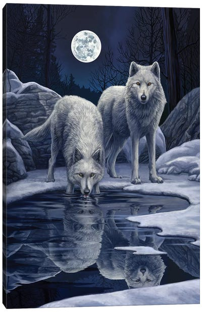 Warriors Of Winter Canvas Art Print