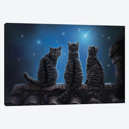 Wish Upon A Star Canvas Print #LPA43} by Lisa Parker Canvas Artwork