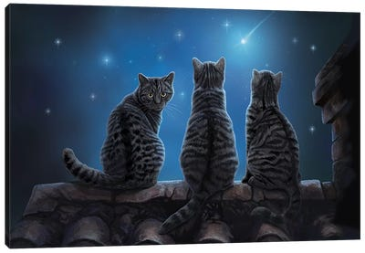 Wish Upon A Star Canvas Art Print
