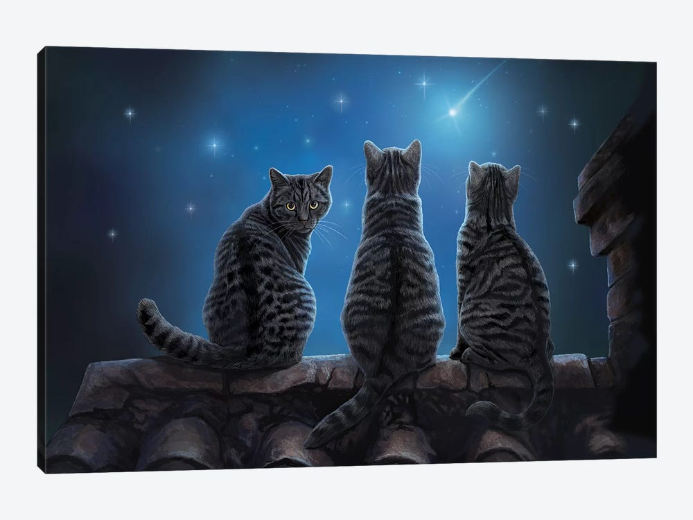 Wish Upon A Star by Lisa Parker 1-piece Canvas Artwork