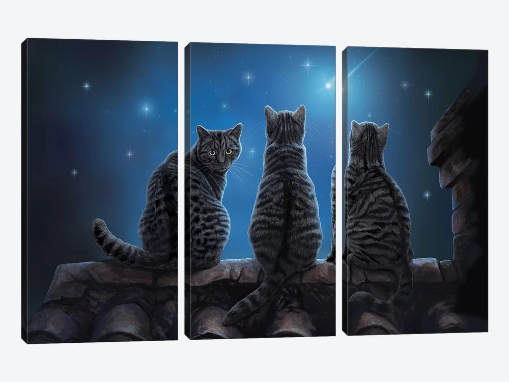 Wish Upon A Star by Lisa Parker 3-piece Canvas Wall Art
