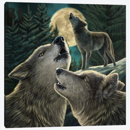 Wolf Song Canvas Print #LPA44} by Lisa Parker Canvas Art Print