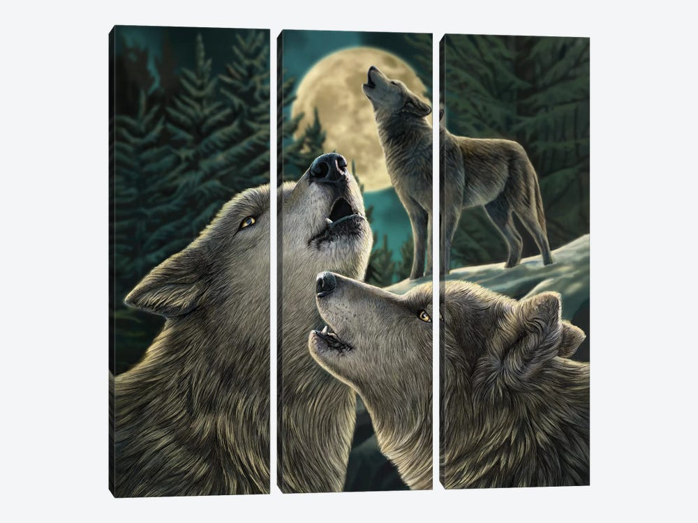 Wolf Song by Lisa Parker 3-piece Art Print