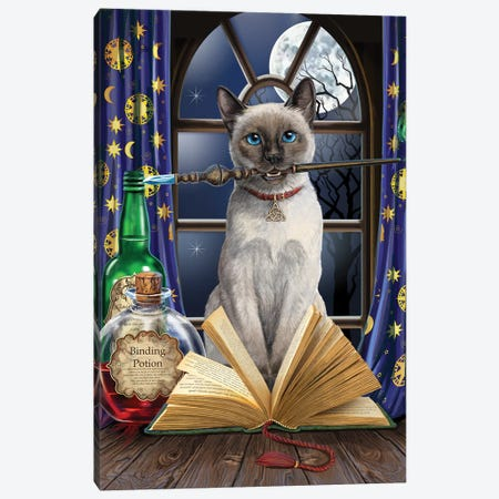 Hocus Pocus Canvas Print #LPA45} by Lisa Parker Canvas Print