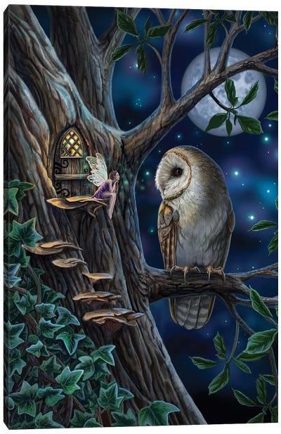 Fairy Tales Canvas Art Print