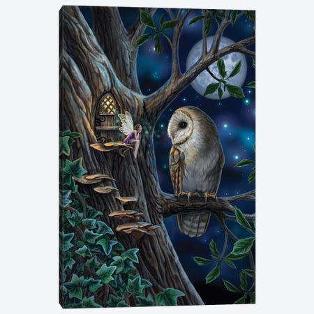 Fairy Tales Canvas Print #LPA49} by Lisa Parker Canvas Art