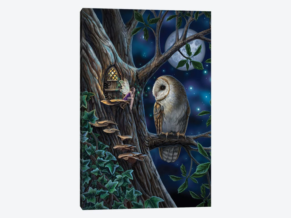 Fairy Tales by Lisa Parker 1-piece Canvas Art
