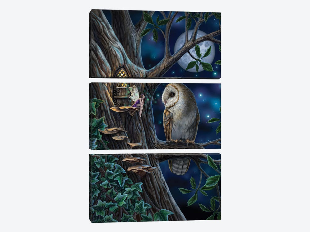 Fairy Tales by Lisa Parker 3-piece Canvas Wall Art