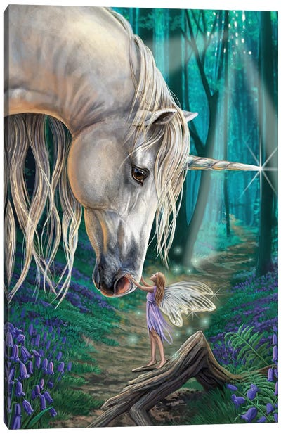 Fairy Whispers Canvas Art Print