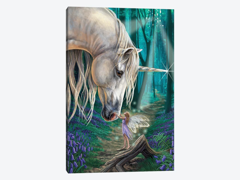 Fairy Whispers by Lisa Parker 1-piece Canvas Artwork