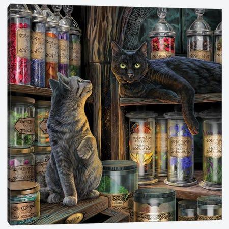 Magical Emporium Canvas Print #LPA54} by Lisa Parker Canvas Wall Art