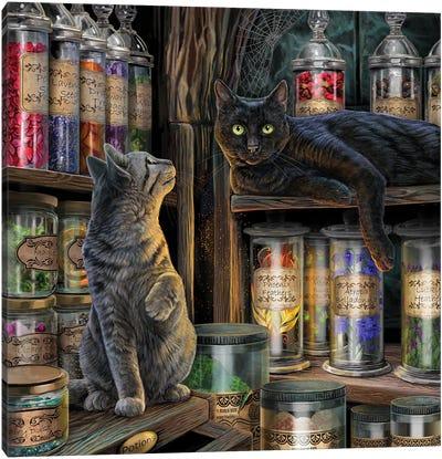 Magical Emporium Canvas Art Print