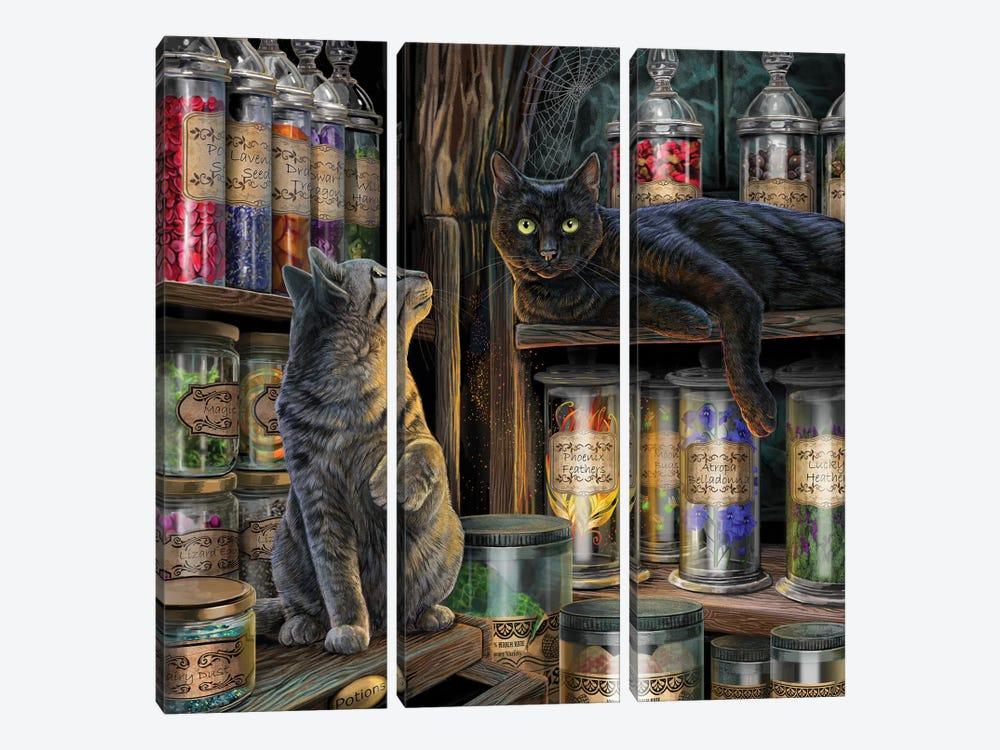 Magical Emporium by Lisa Parker 3-piece Canvas Artwork