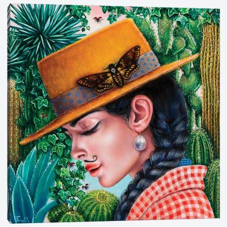 Chihuahuan Desert Canvas Print #LPF107} by Liva Pakalne Fanelli Canvas Art