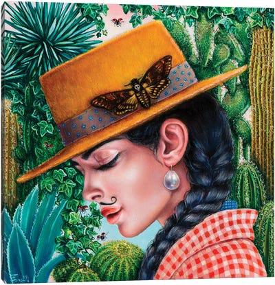 Chihuahuan Desert Canvas Art Print