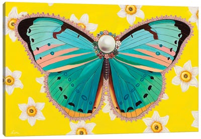 Butterfly With Daffodils Canvas Art Print